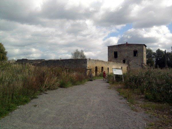 zdjecie,600,318318,20120909,ruiny-zamku-w-cmielowie