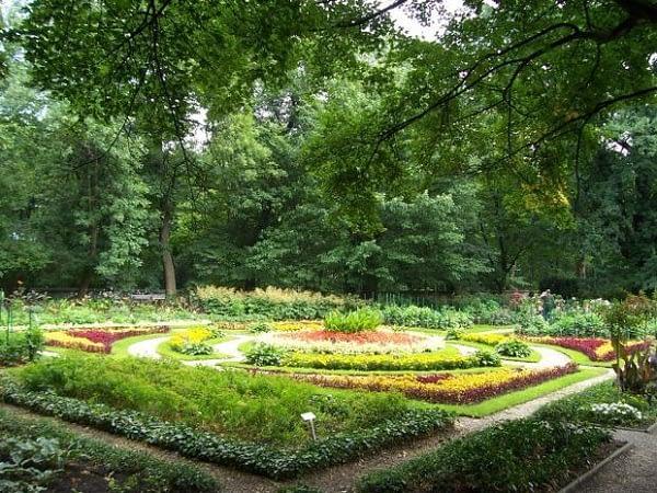 z4363557Q,Ogrod-Botaniczny-UW