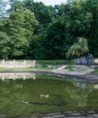 Park w Podkowie Leśnej