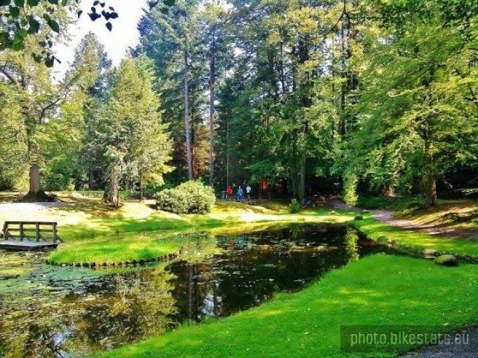 Arboretum Wirty