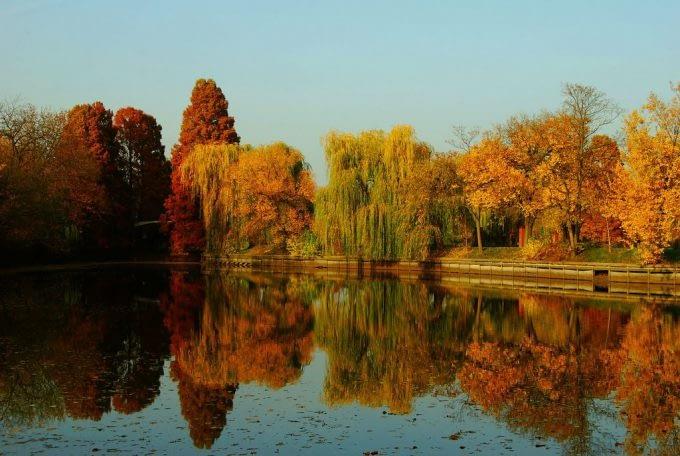 Bukareszt – Insula Trandafirilor